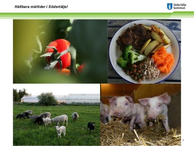 Hållbara måltider i Södertälje!  www.sodertalje.se  1