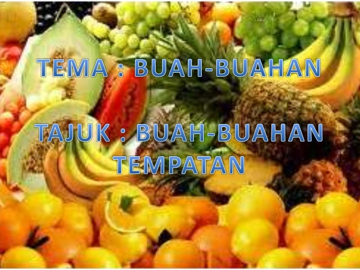 ... buah buahan tempatan object lakaran gambar buah buahan cached similar