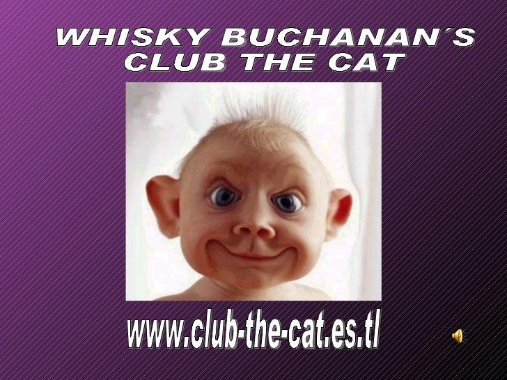 www.club-the-cat.es.tl WHISKY BUCHANAN´S CLUB THE CAT