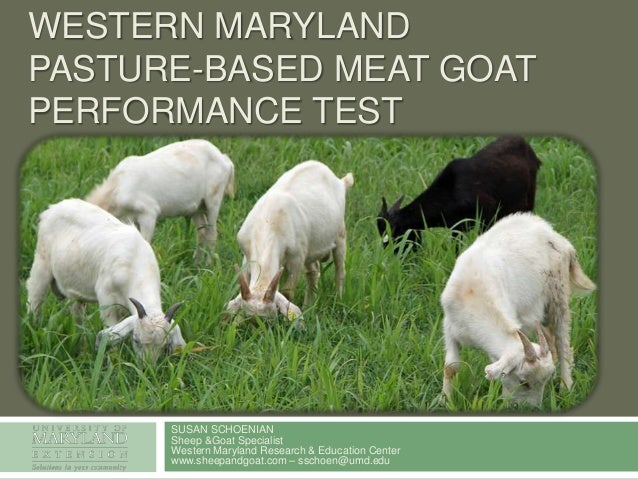 WESTERN MARYLAND PASTURE-BASED MEAT GOAT PERFORMANCE TEST  SUSAN SCHOENIAN Sheep &Goat Specialist Western Maryland Researc...