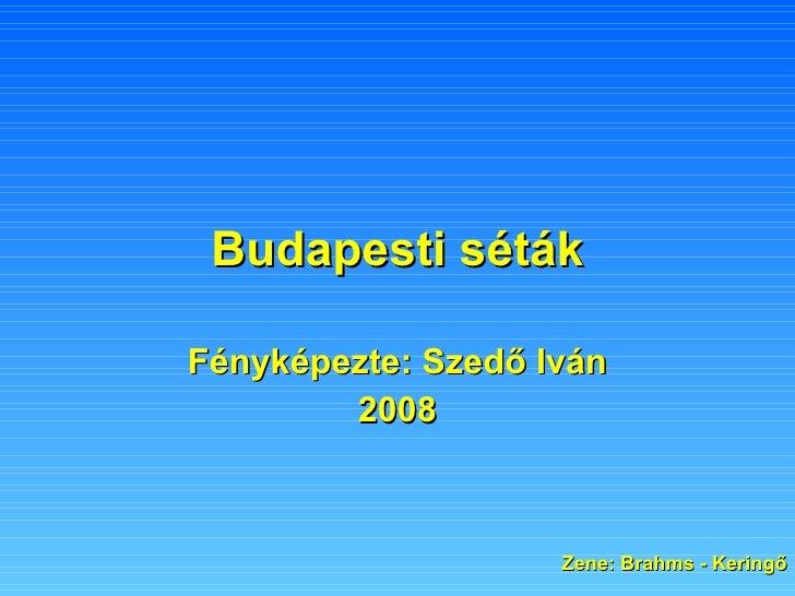 Budapesti séták Fényképezte: Szedő Iván 2008 Zene: Brahms - Keringő