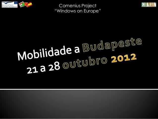 "Comenius Project ""Windows on Europe"""