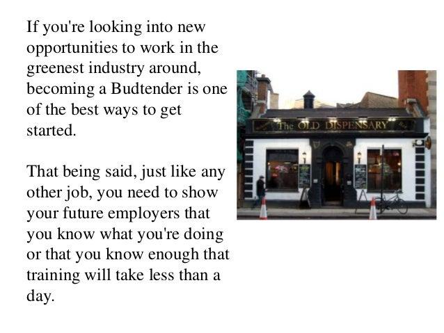 Budtender resume