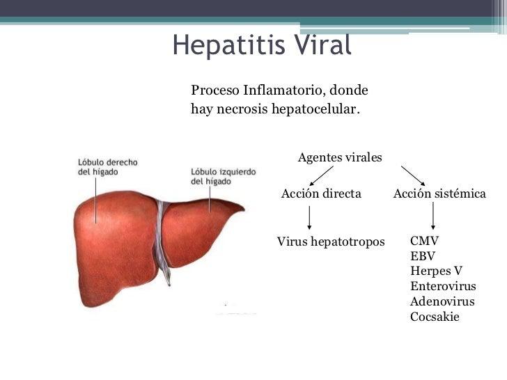 Hepatitis Viral<br />                                             Proceso Inflamatorio, donde <br />                      ...