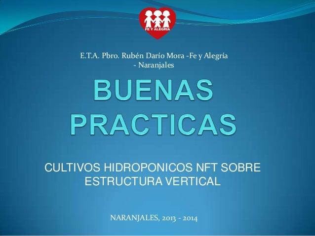 E.T.A. Pbro. Rubén Darío Mora -Fe y Alegría - Naranjales  CULTIVOS HIDROPONICOS NFT SOBRE ESTRUCTURA VERTICAL NARANJALES, ...