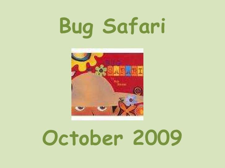 Bug Safari<br />October 2009<br />