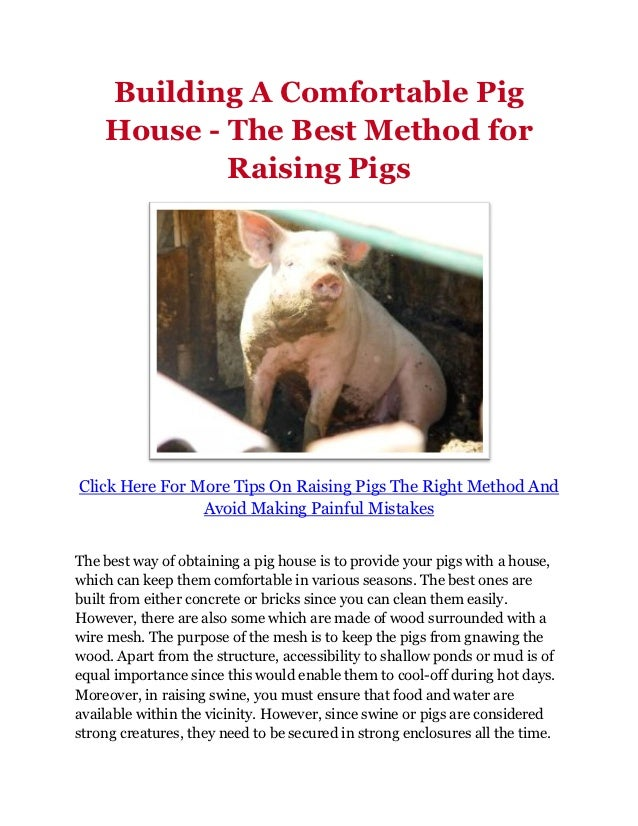Building A Comfortable Pig House - The Best Method for Raising Pigs