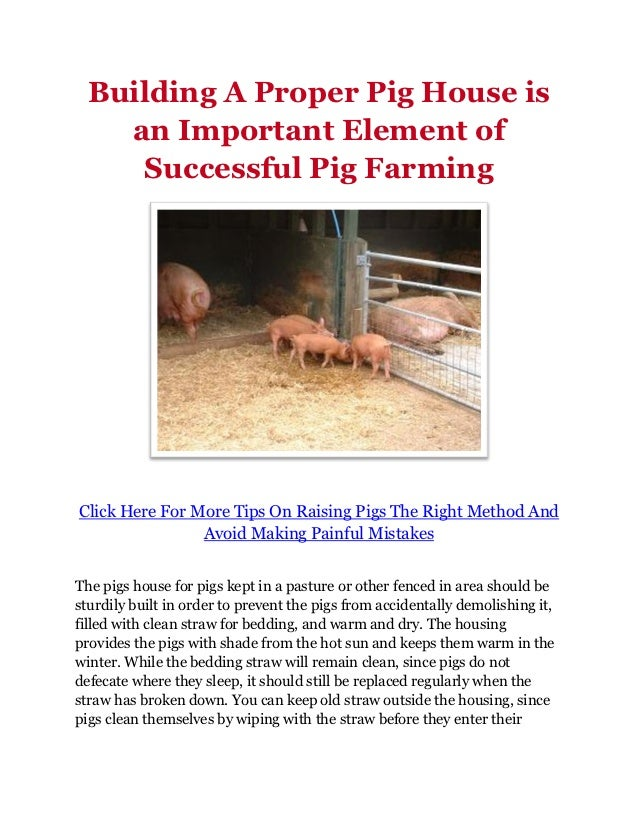 Building A Proper Pig House Is An Important Element Of