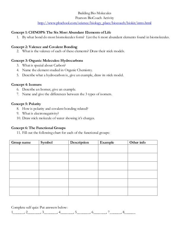 Worksheet Biomolecules Worksheet biological molecules worksheet worksheets for school kaessey