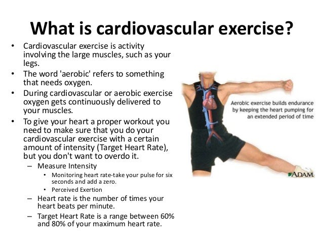 an evaluation of cardiovascularaerobic endurance A cardiorespiratory aerobic exercise is an exercise that improves v o 2 and is usually performed at 50–80% of the maximal heart rate (220 − age) the american college of sports medicine defined a dynamic exercise program as aerobic exercises performed at between 60% and 80% of the maximal heart rate at least twice a week for 6 weeks.