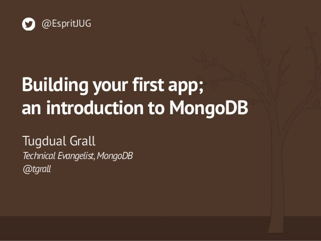 Building Your First MongoDB Application