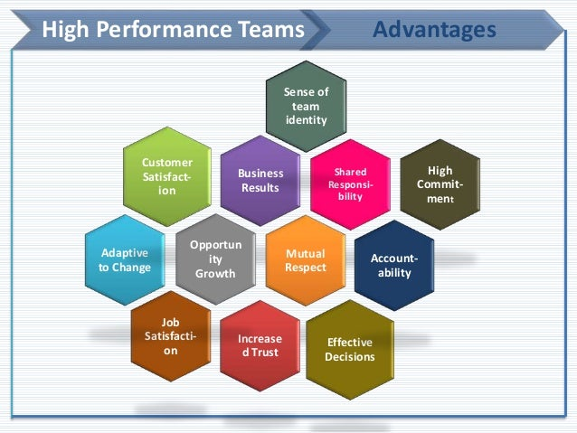 leading high performance teams
