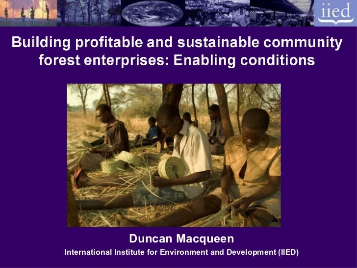Building profitable and sustainable community forest enterprises: Enabling conditions