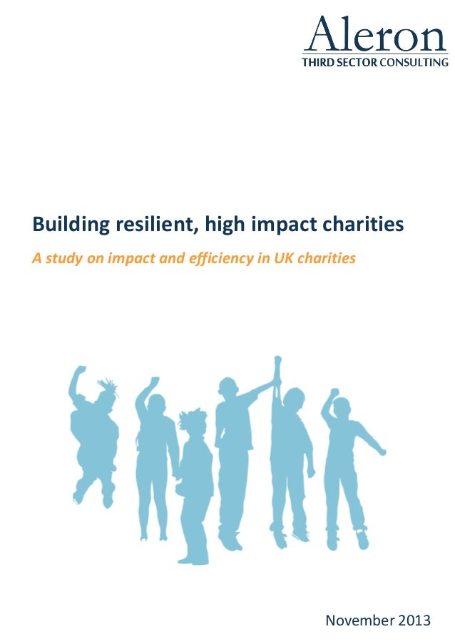Building resilient, high impact charities A study on impact and efficiency in UK charities November 2013