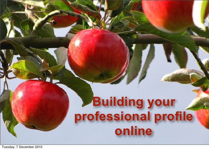 Building your professional profile online