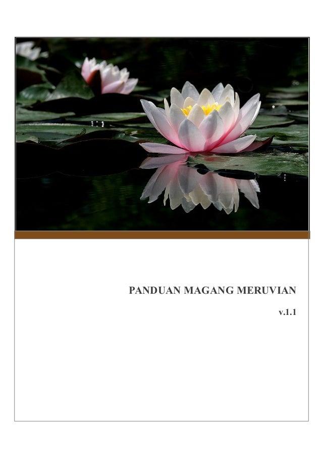 PANDUAN MAGANG MERUVIAN v.1.1