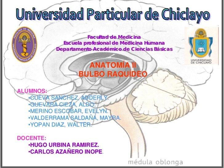 Facultad de Medicina              Escuela profesional de Medicina Humana            Departamento Académico de Ciencias Bás...