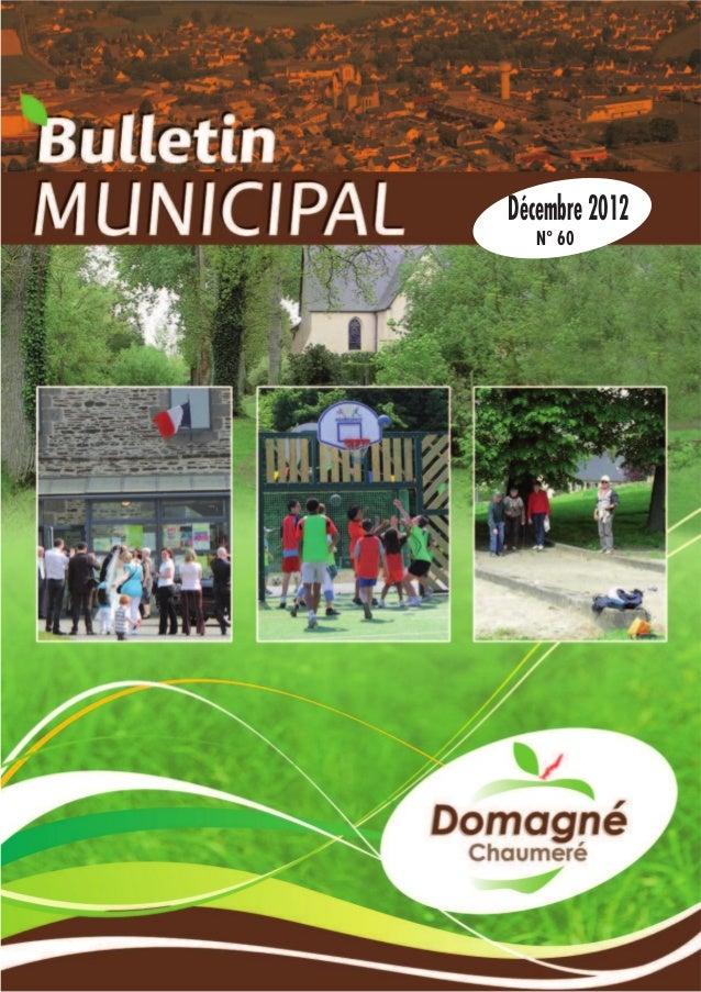 Bulletin domagné déc_2012