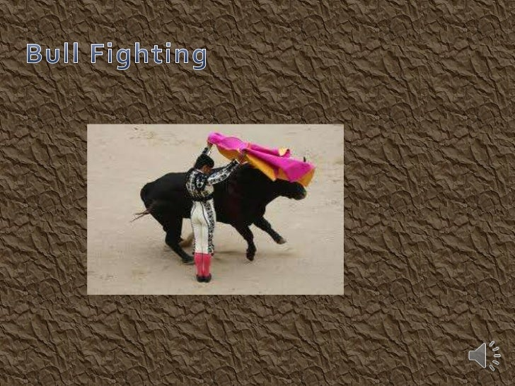 Bull Fighting is dangerous