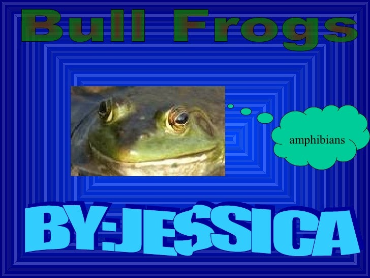amphibians BY:JESSICA Bull Frogs