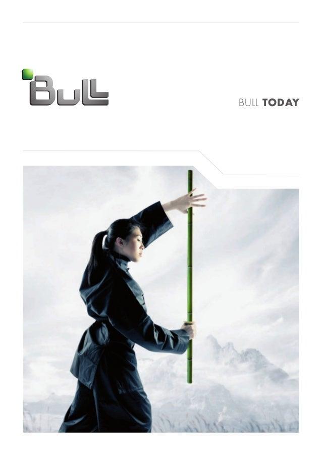 Bull Profile 2012 (English)