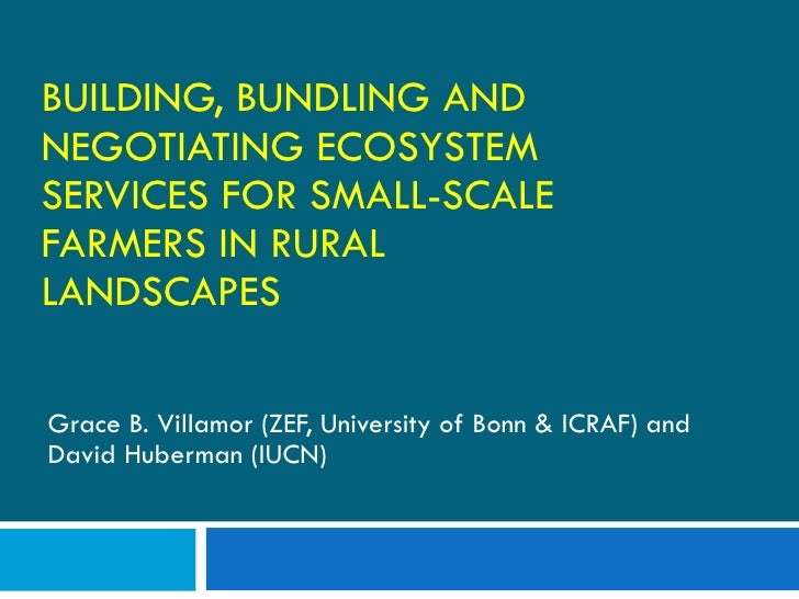 BUILDING, BUNDLING AND NEGOTIATING ECOSYSTEM SERVICES FOR SMALL-SCALE FARMERS IN RURAL LANDSCAPES Grace B. Villamor (ZEF, ...