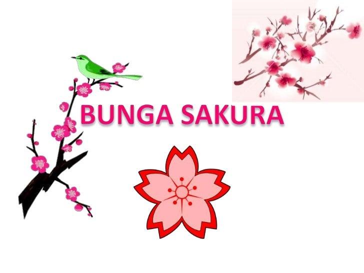 "Sejarah Bunga SakuraSakura berasal dari kata ""Saku"" yang dalambahasa Jepang berarti ""mekar"" dan ditambahdengan akhiran yan..."