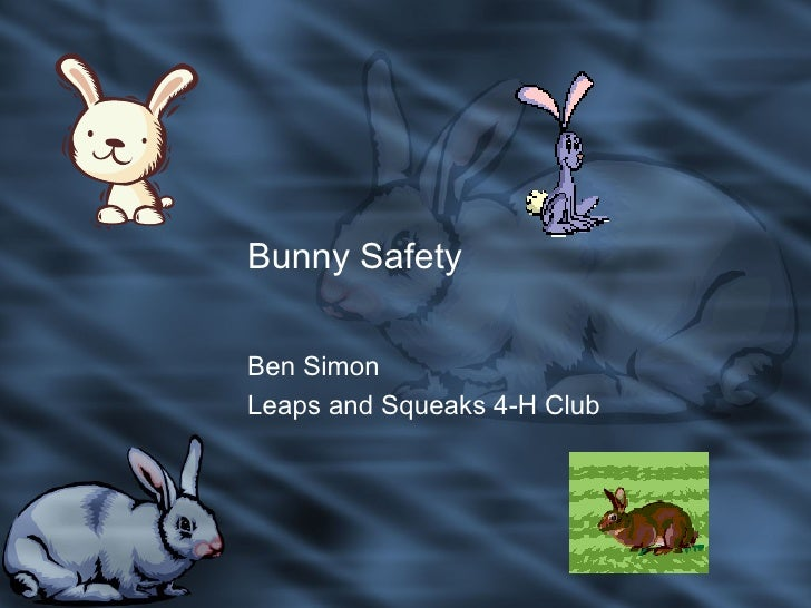 Bunny Safety Ben Simon Leaps and Squeaks 4-H Club