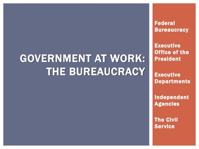 effects of bureaucracy on the work of government