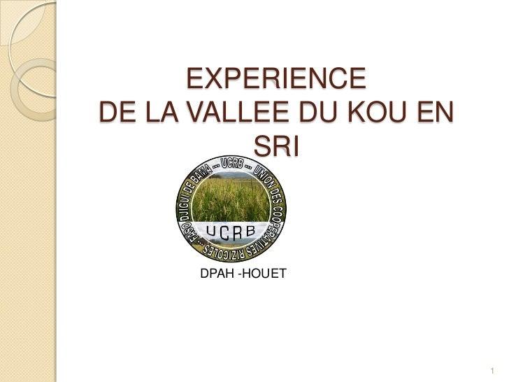 EXPERIENCEDE LA VALLEE DU KOU EN          SRI      DPAH -HOUET                         1