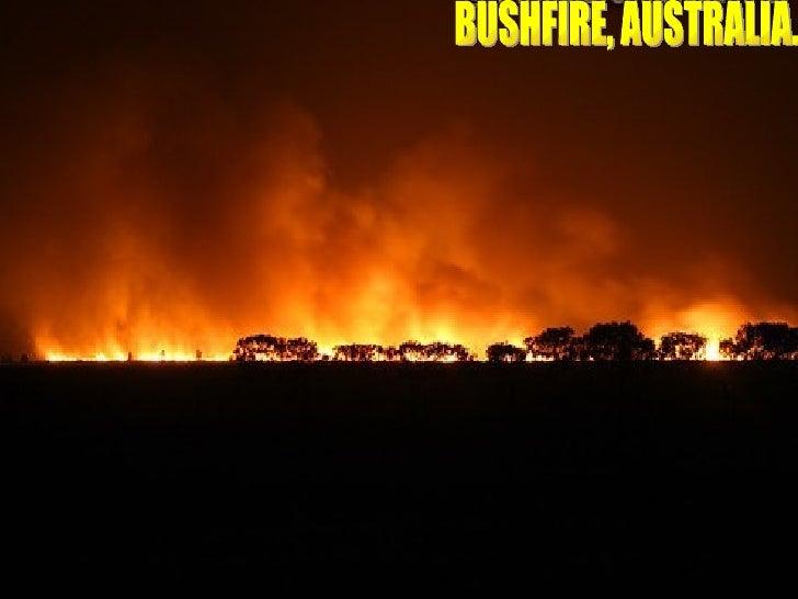 Bushfire Australia.