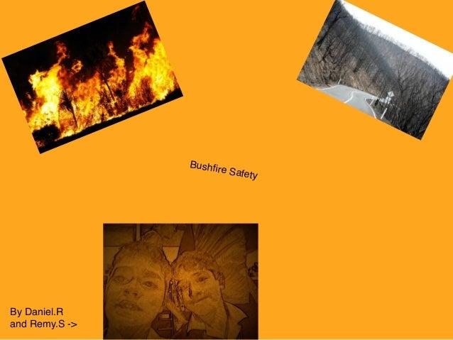 Bushfire safety daniel remy