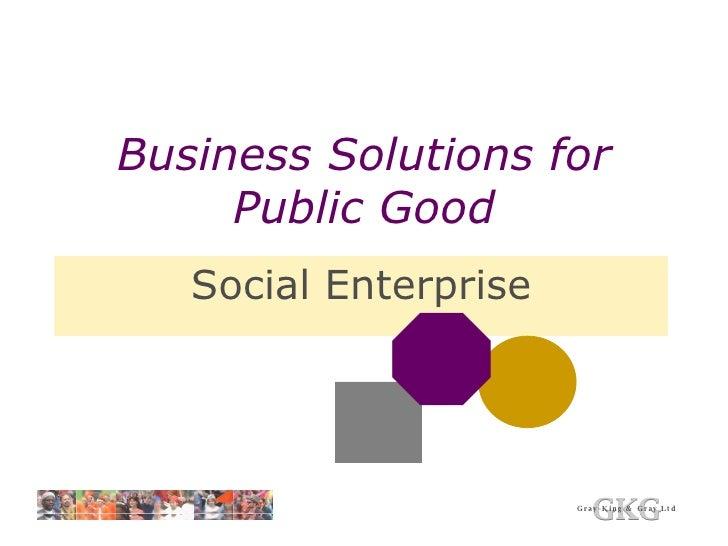 Business Solutions for Public Good Social Enterprise