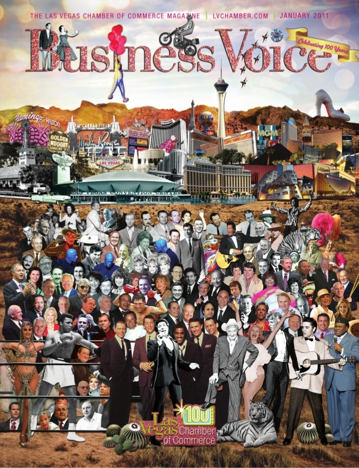 Business Voice January 2011