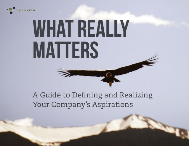 What Really Matters: A Guide to Defining and Realizing Your Company's Aspirations