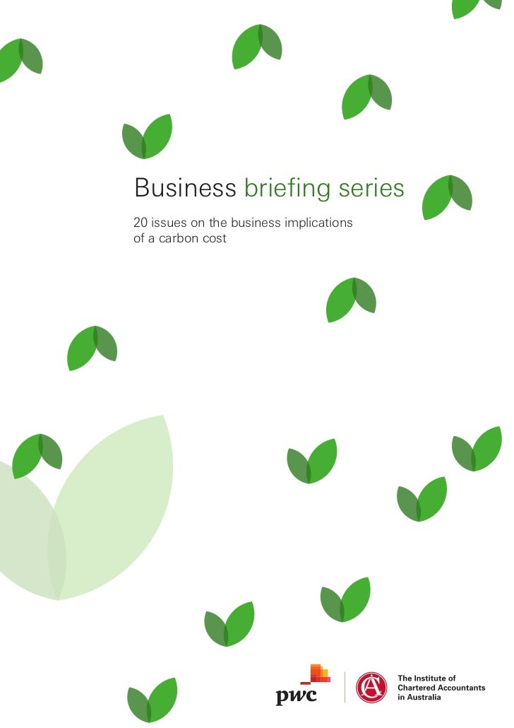 Business briefing series20 issues on the business implicationsof a carbon cost