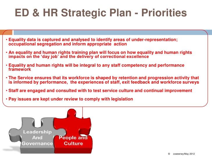 Comprehensive Diversity Management Plan
