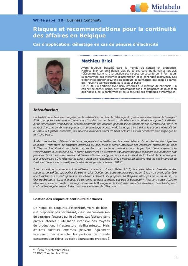 Introduction  L'actualité récente a été marquée par la publication du plan de délestage du gestionnaire du réseau de trans...