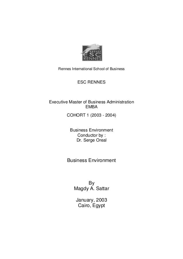 Business environment report