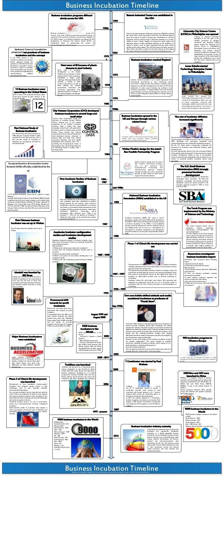 Business Incubation Timeline (2013)