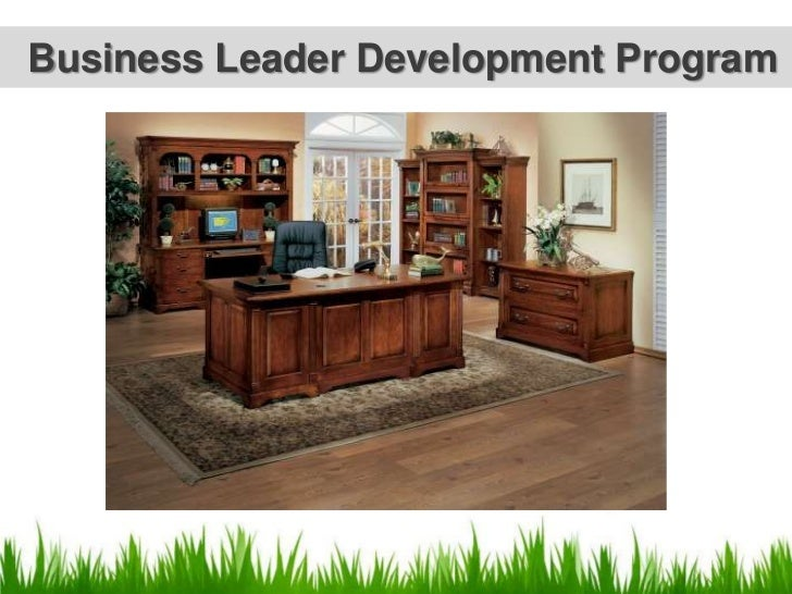 Business Leader Development Program