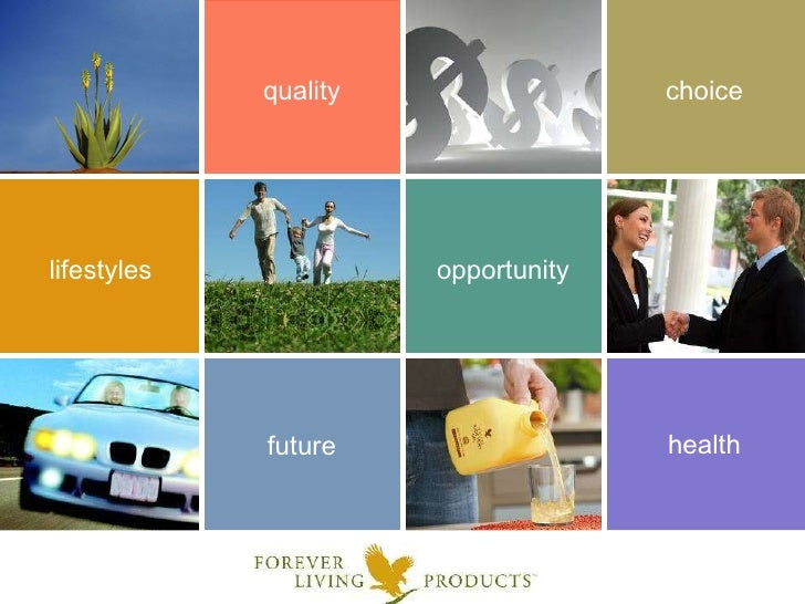forever living products marketing plan pdf