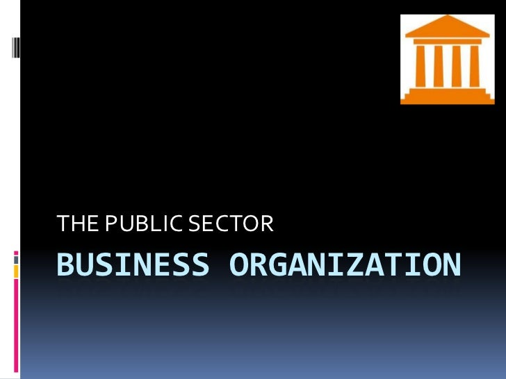 BUSINESS ORGANIZATION<br />THE PUBLIC SECTOR<br />