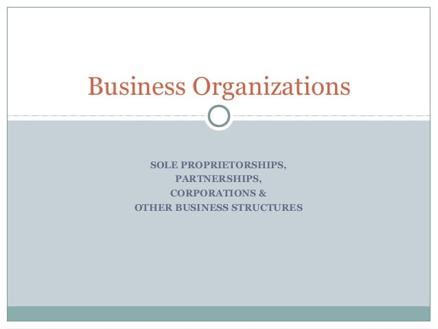 SOLE PROPRIETORSHIPS,PARTNERSHIPS,CORPORATIONS &OTHER BUSINESS STRUCTURESBusiness Organizations