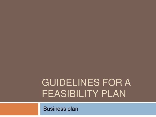 GUIDELINES FOR A FEASIBILITY PLAN Business plan