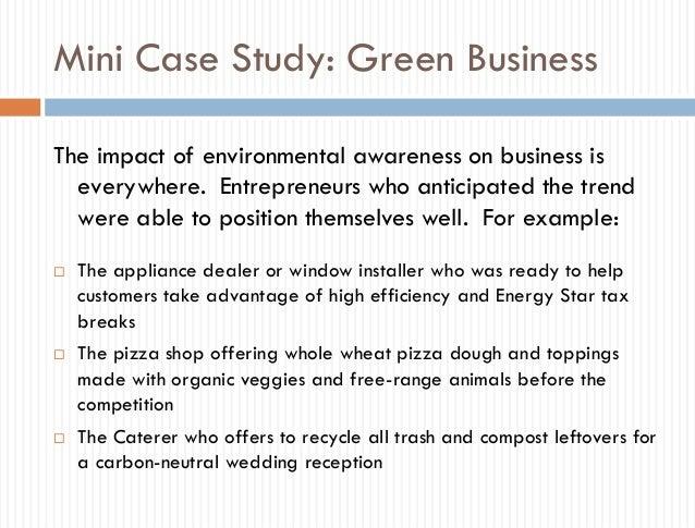 Mini business plan