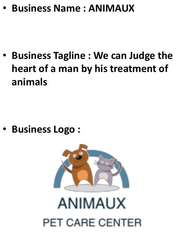 Veterinary clinic business plan