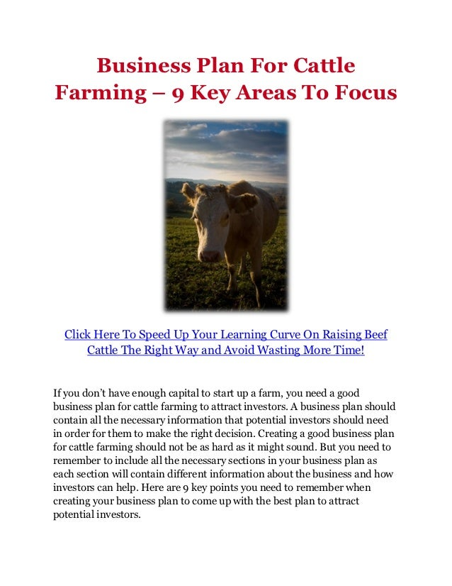 Business plan for cattle production