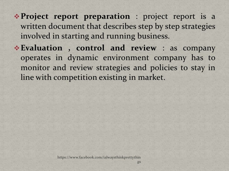 Business plan project report