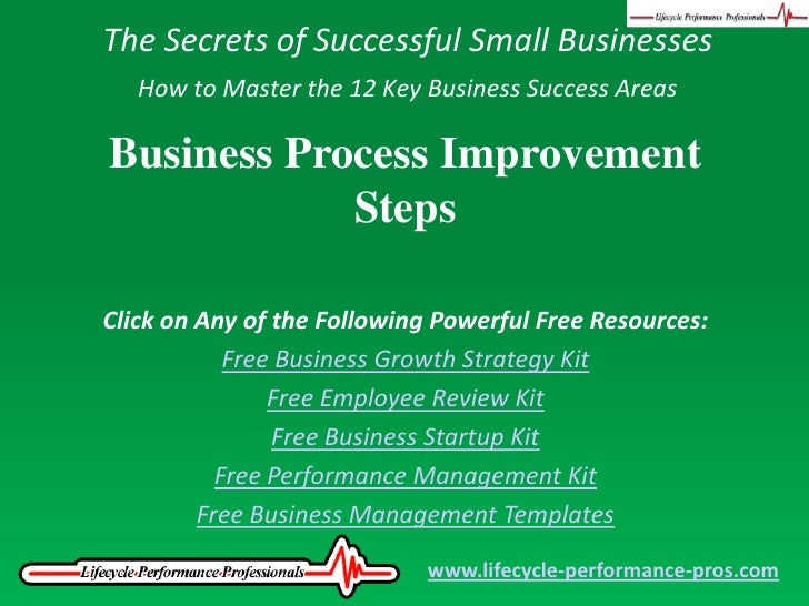 The Secrets of Successful Small Businesses<br />How to Master the 12 Key Business Success Areas<br />Business Process Impr...